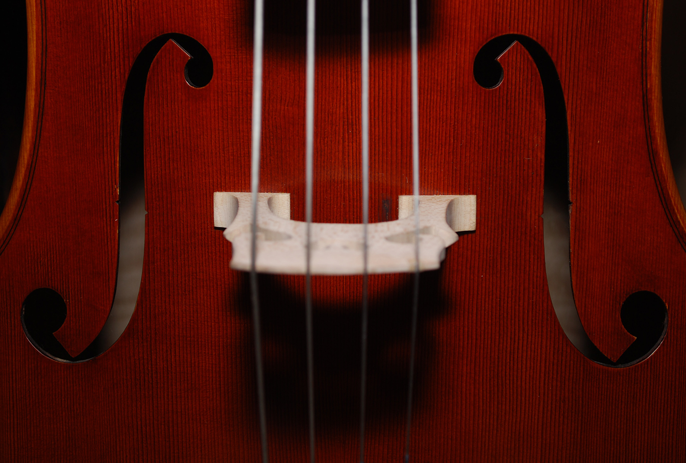 【6月27日開催】ストリングス講座1:楽器について理解しよう!