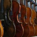 【音楽制作】ストリングスとは何なのか?その正体と、ストリングスを構成する楽器の種類について解説!