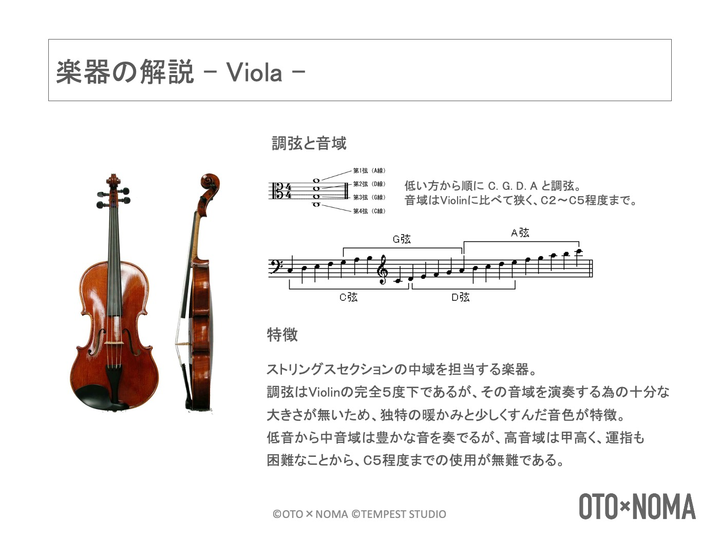 ヴィオラの音域と特徴
