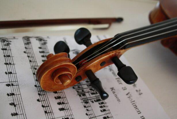 弦楽器の楽器法①:ヴァイオリンの構造、音域、特徴を理解しよう!