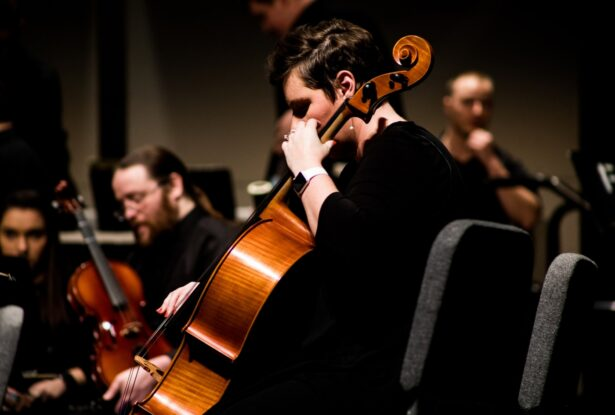 弦楽器の楽器法③:チェロの構造、音域、特徴を理解しよう!