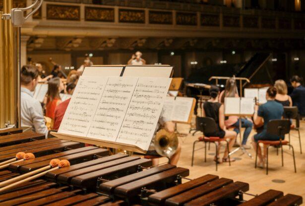 打楽器の楽器法③:マレットパーカッション(鍵盤打楽器)の構造、特徴を理解しよう!
